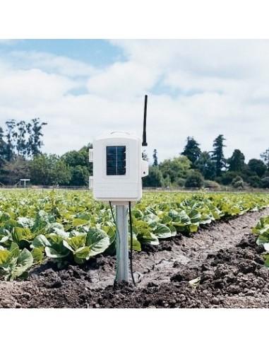 Stacja pomiarowa temperatury i wilgotności gleby, zwilżenia liści (z czujnikiem temp. i wilg.)